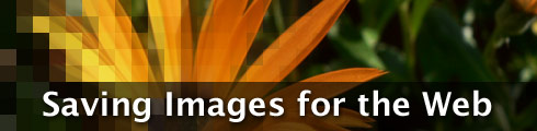 saving images for the web
